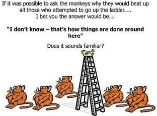 8-5monkeys